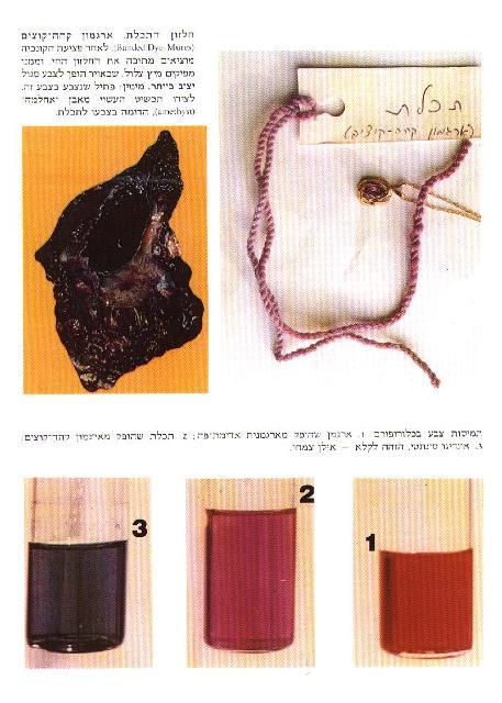 To Wear Tekhelet, One Cannot Think Orthodox